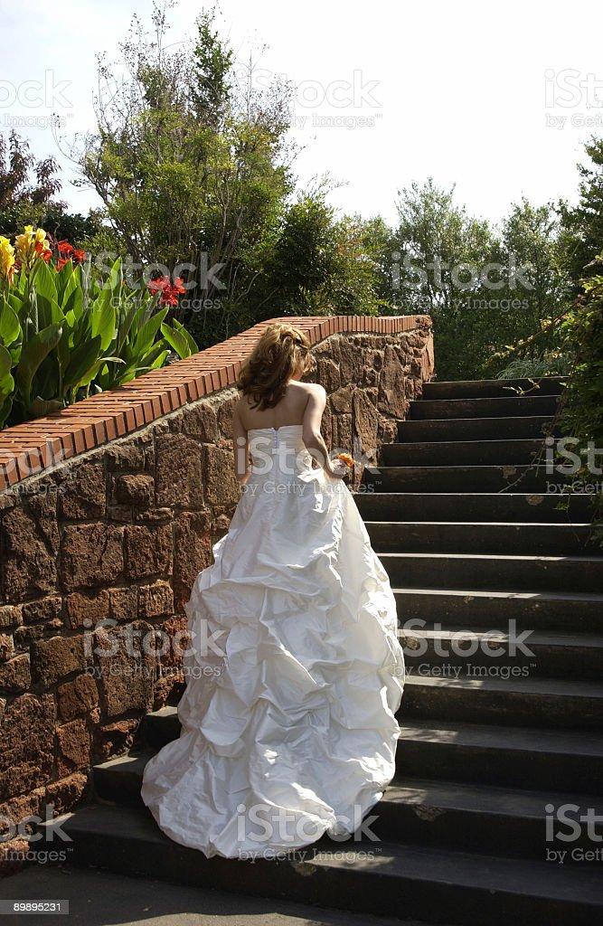 Novia caminando subir escaleras foto de stock libre de derechos