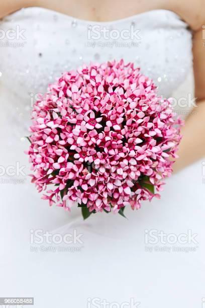 Bruden Med Bukett-foton och fler bilder på Blomma