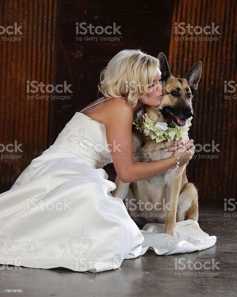Bride with Her German Shepherd Dog royalty-free stock photo