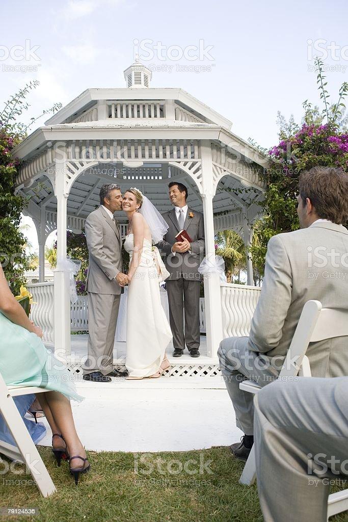 Bridegroom kissing bride  免版稅 stock photo
