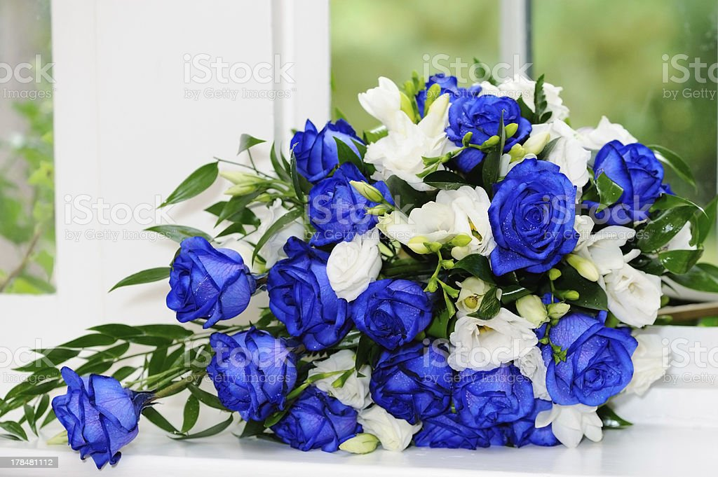 Brides bunch of blue roses royalty-free stock photo