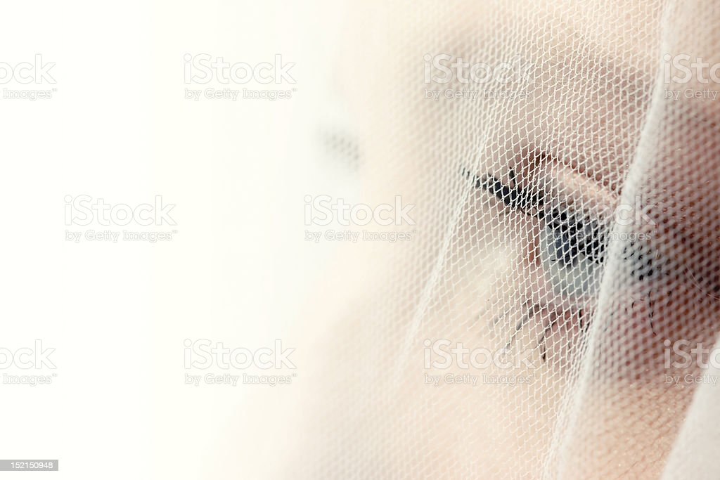 Bride's eye behind veil stock photo
