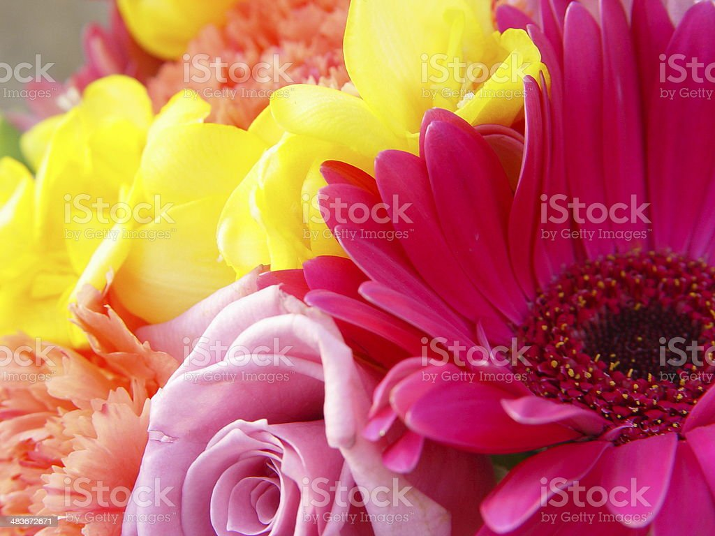 Bridesmaid bouquet royalty-free stock photo