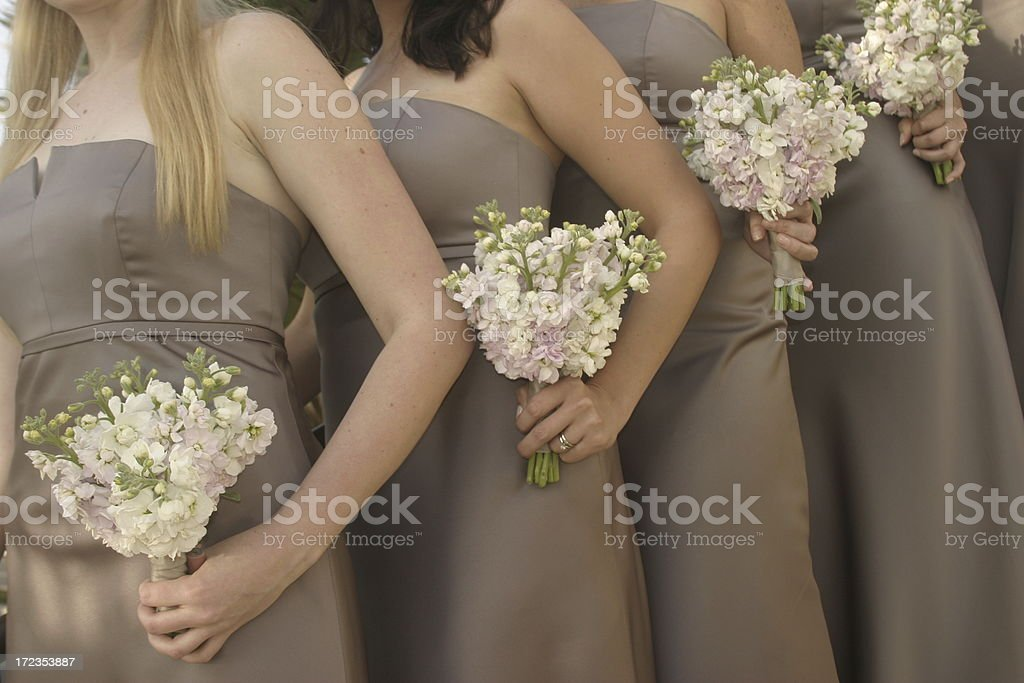 Bridesmaids in tan dresses with flowers royalty-free stock photo
