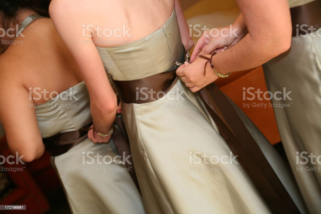 Bridesmaids royalty-free stock photo