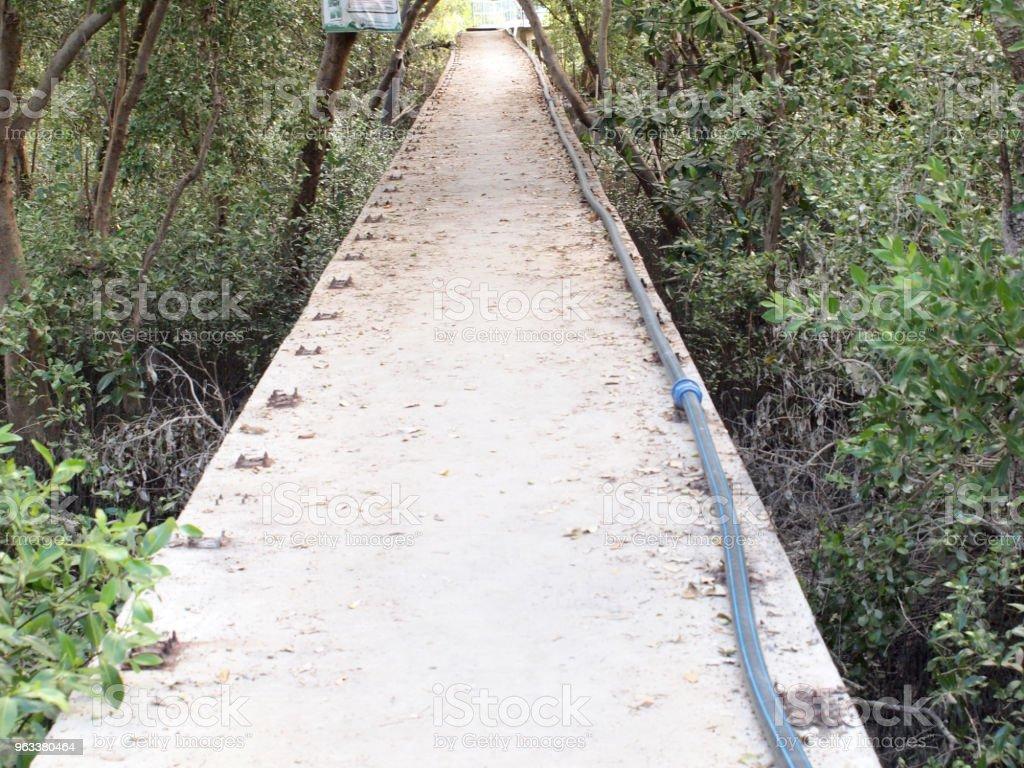 bridge across dry river - Zbiór zdjęć royalty-free (Bez ludzi)