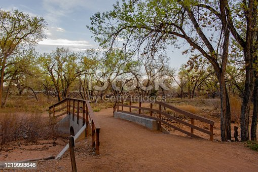 istock Bridge along the Bosque in Albuquerque 1219993646