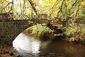 Bridge, river and autumn trees