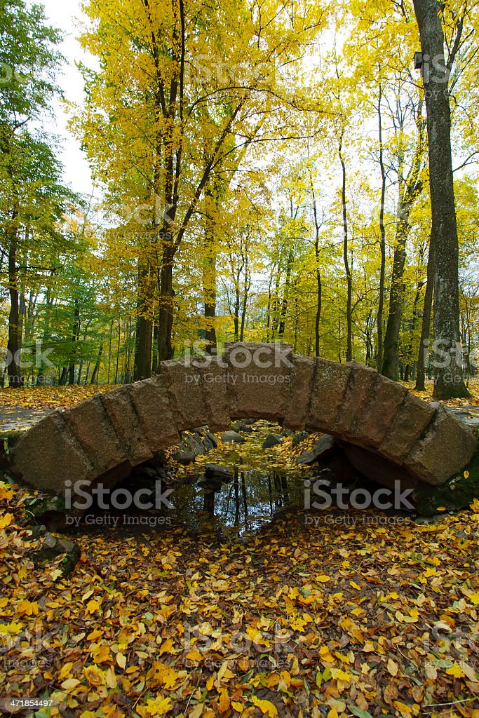 Bridge and color leaves in Autumn royalty-free stock photo