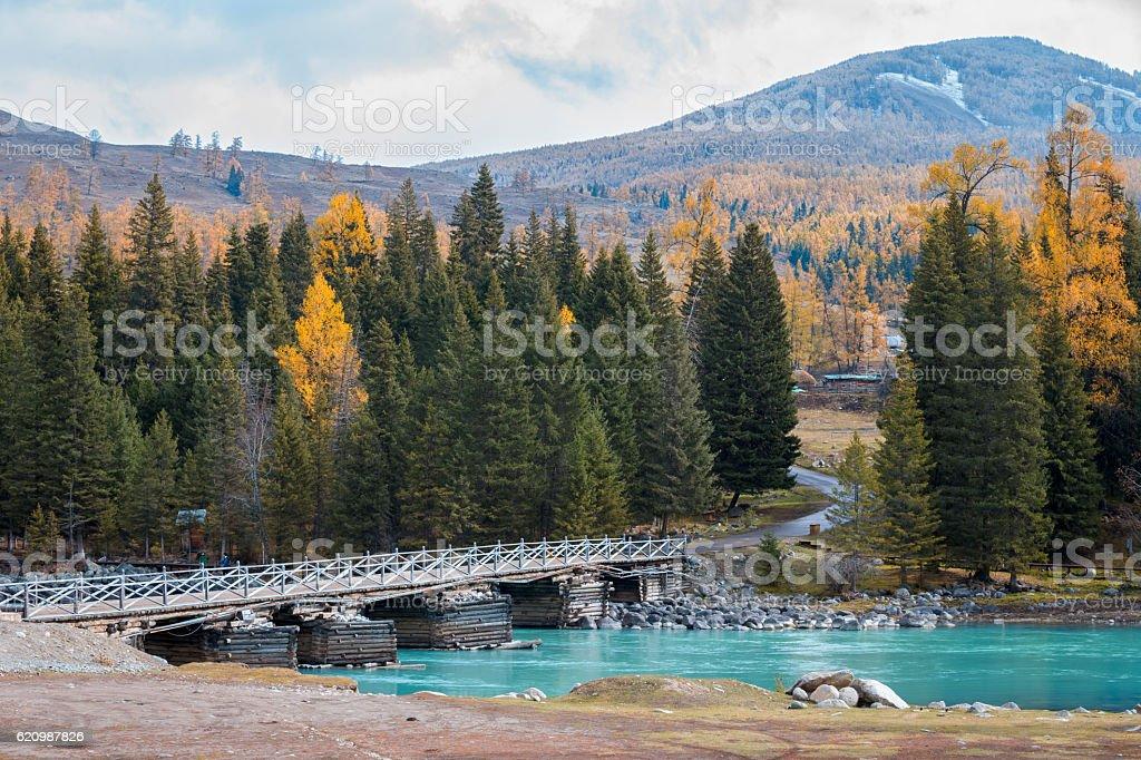 Bridge at Kanas Lake area, Xinjiang, China foto royalty-free