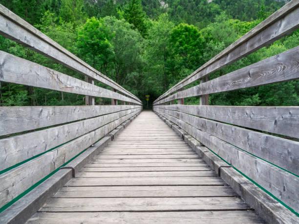 pont à la plansee en autriche - passerelle pont photos et images de collection