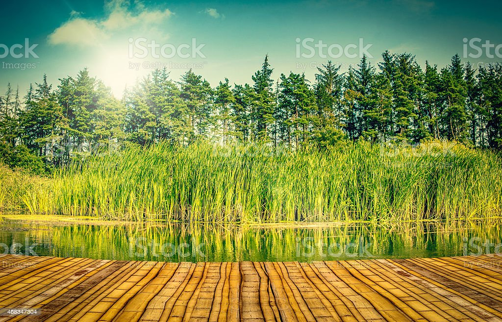 Bridge by a lake royalty-free stock photo