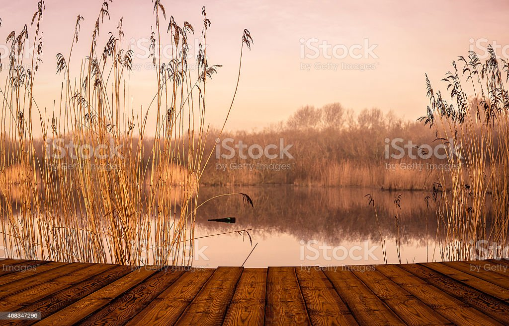 Bridge by an idyllic lake royalty-free stock photo