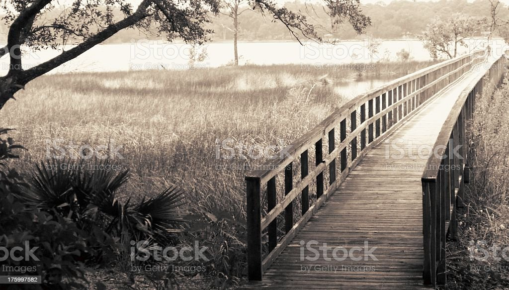 Bridge in afternoon light royalty-free stock photo