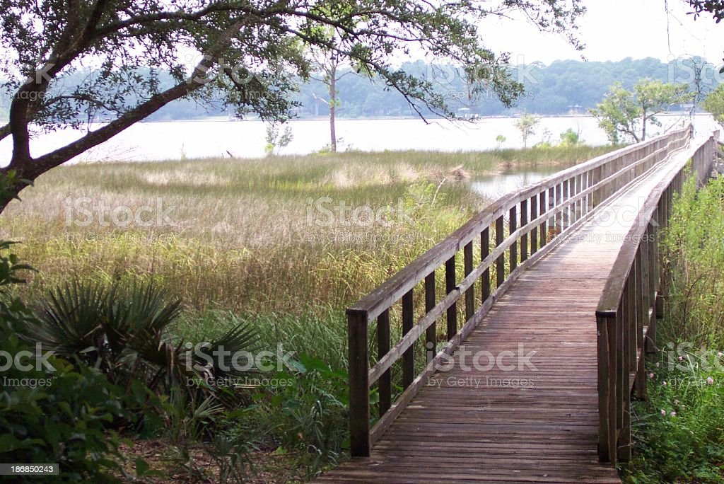 bridge in afternoon light (color) royalty-free stock photo