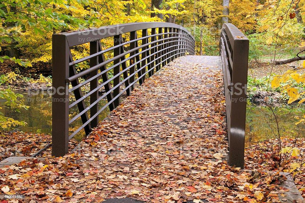 Bridge In Autumn stock photo