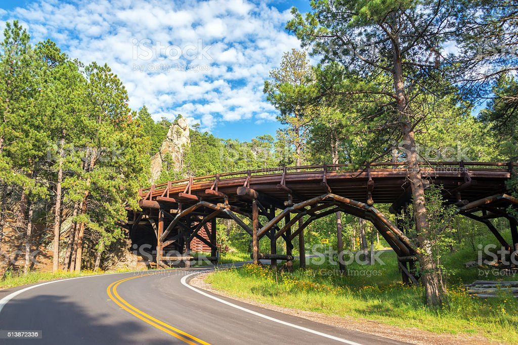 Bridge in Custer State Park stock photo