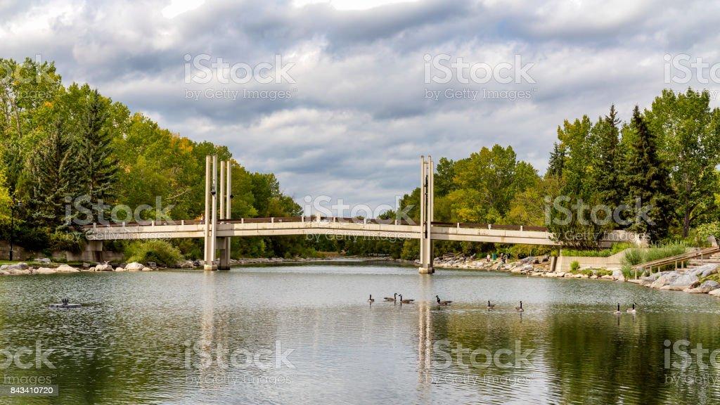 Bridge in public park stock photo