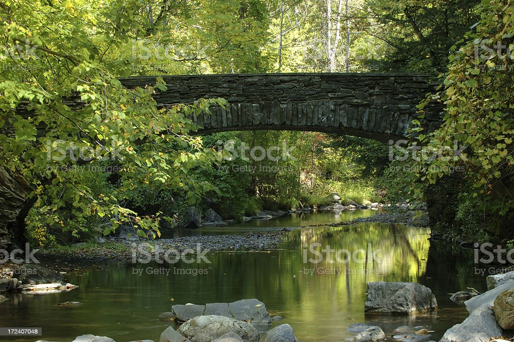 Bridge in Robert Treman State Park stock photo