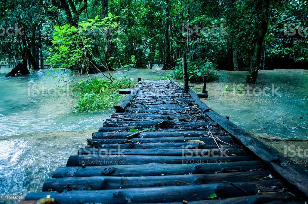Bridge in Tad Sae stock photo