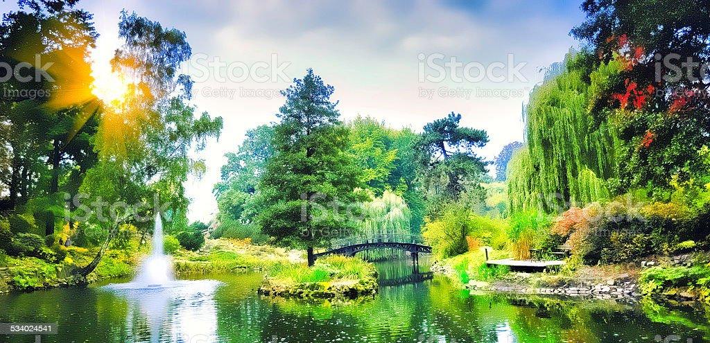Bridge in the Japanese  garden stock photo