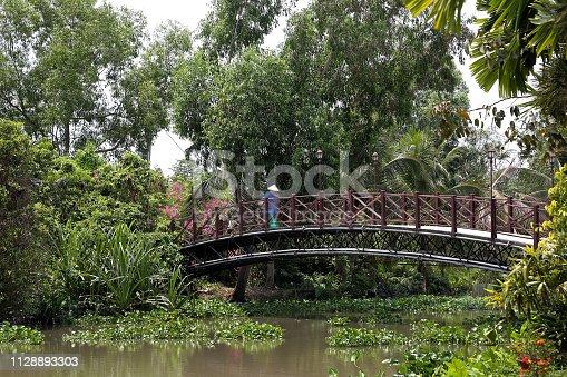 A bridge in the park in Vietnam