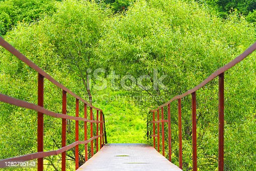 Bridge in the park over the river. Summer day, green willows at the footbridge