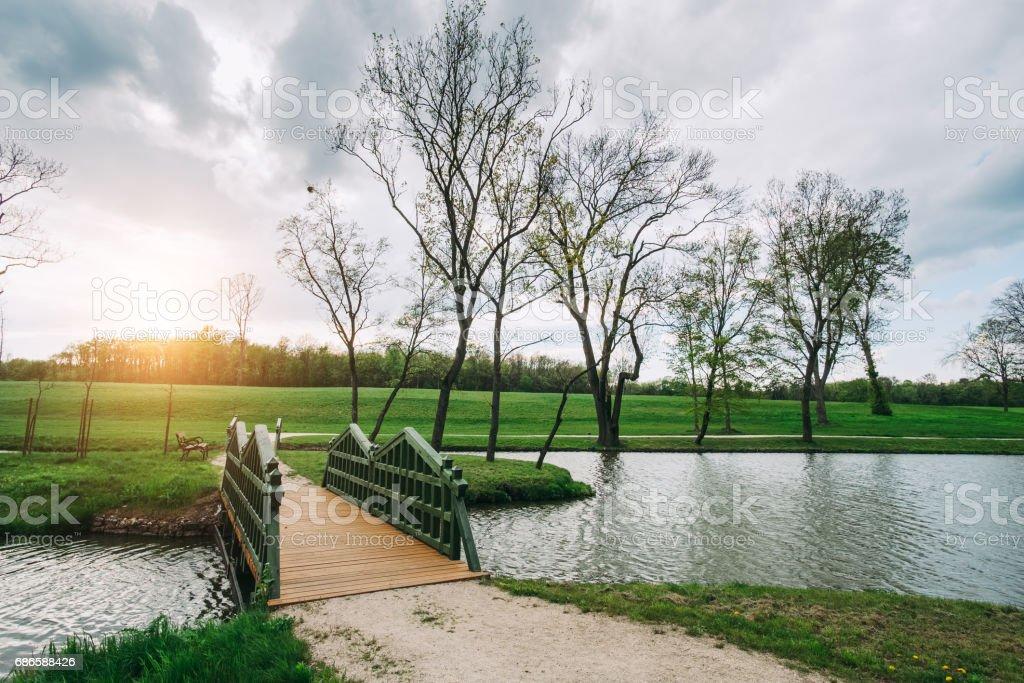 Pont dans le parc photo libre de droits