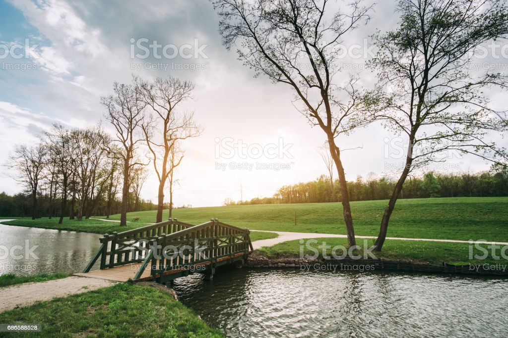Bridge in the park royalty-free stock photo