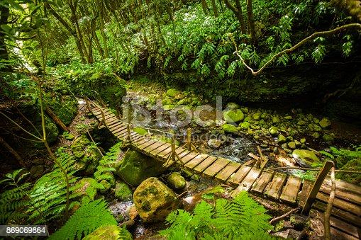 istock Bridge in the Rainforest 869069864