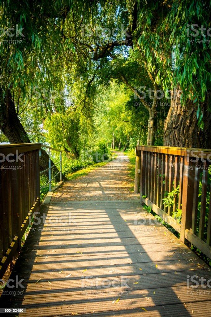 Bridge into Green royalty-free stock photo