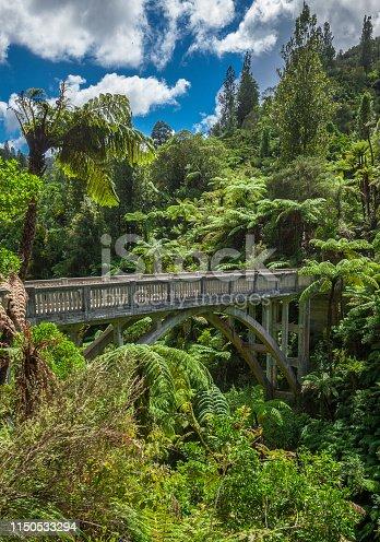 Bridge of Nowhere in the Wanganui area, North Island, New Zealand