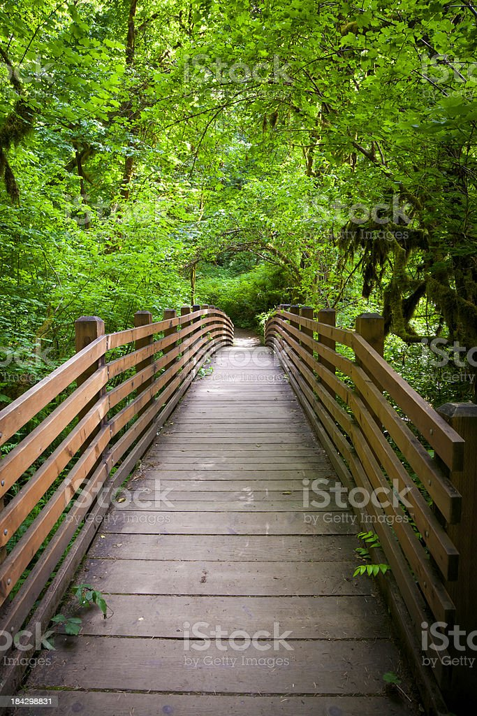 Bridge of Promise royalty-free stock photo