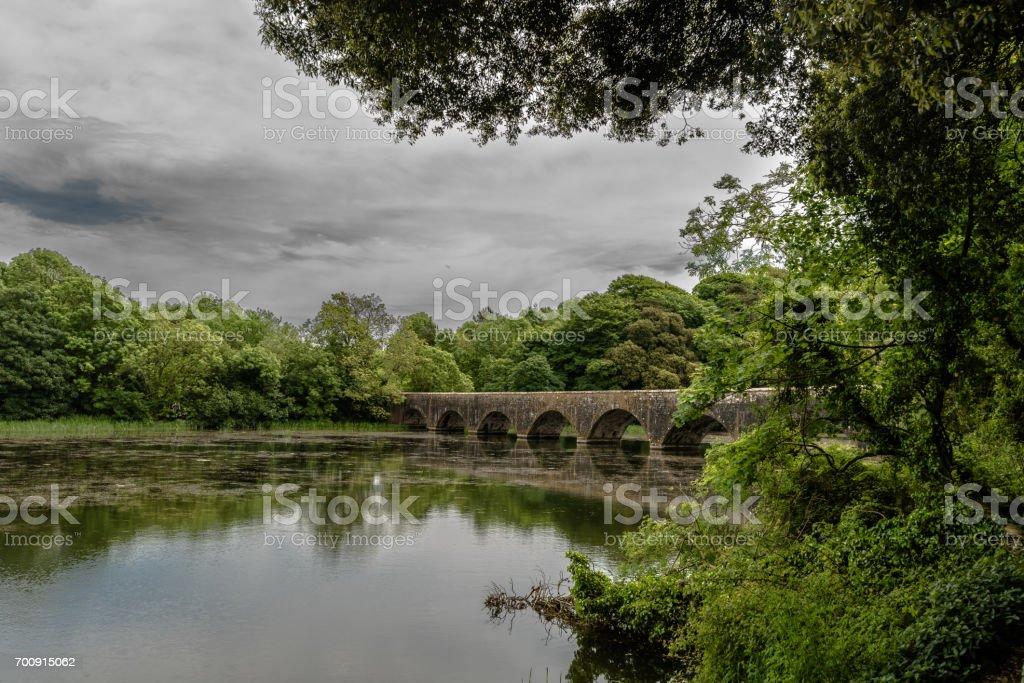 Bridge on the fish pond stock photo