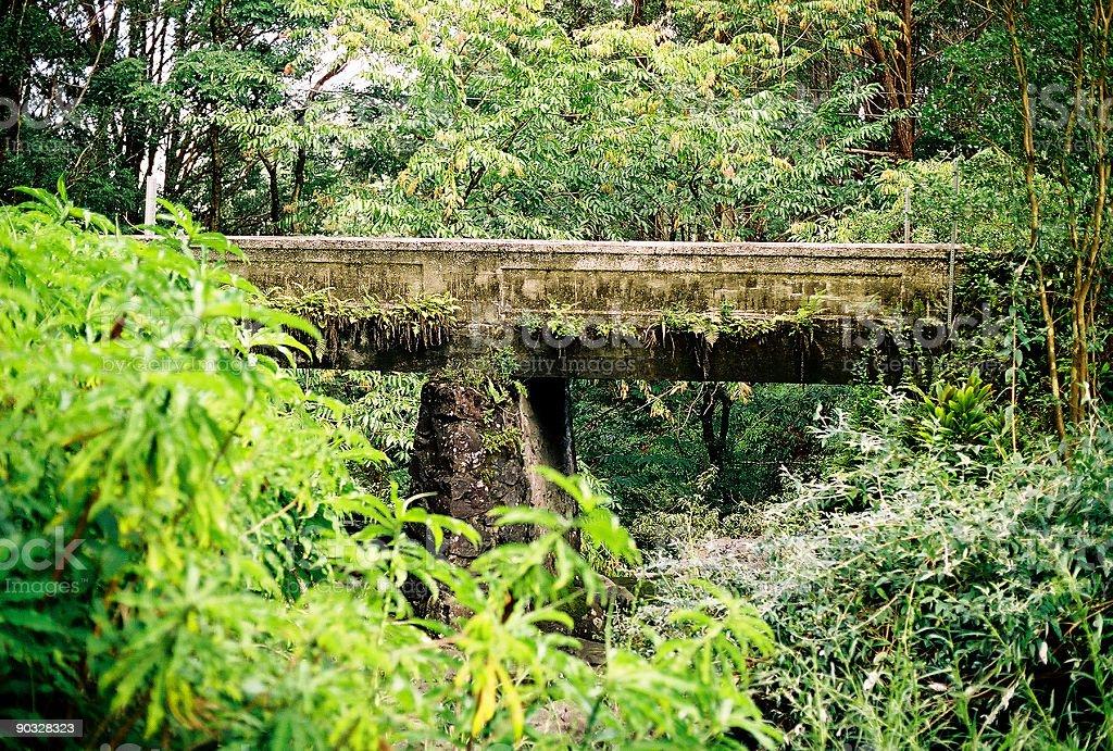 Bridge on the road to Hana, Maui, Hawaii royalty-free stock photo