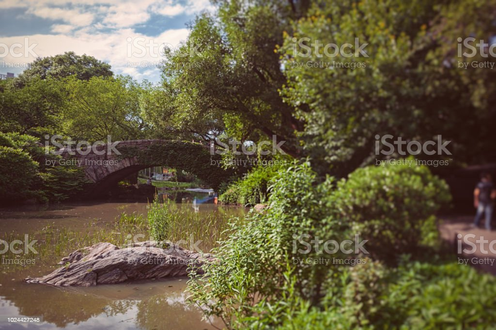 bridge over a pond in Central Park NYC stock photo