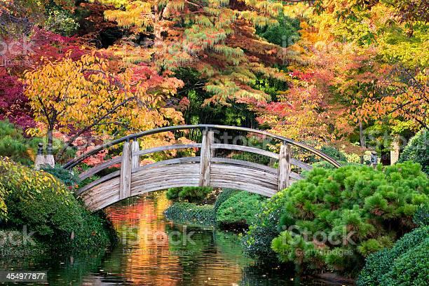 Photo of Bridge Over Autumnal Waters