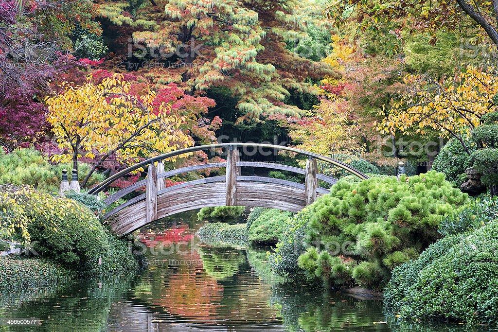 Bridge Over Autumn-tinged Waters stock photo