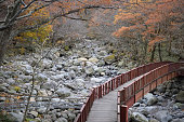 Bridge over dry riverbed near Eorimok Trail at Hallasan National Park, Jeju, Korea