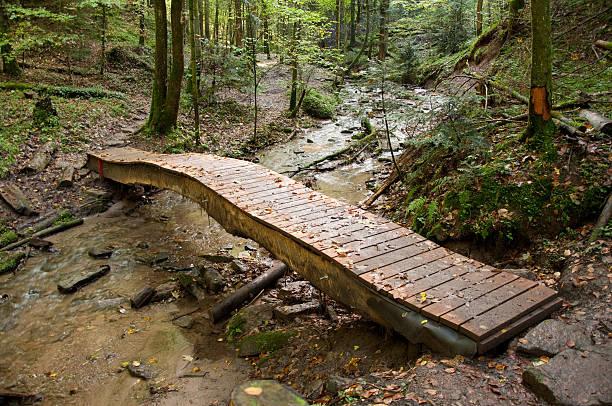 Brücke über Wald brook – Foto