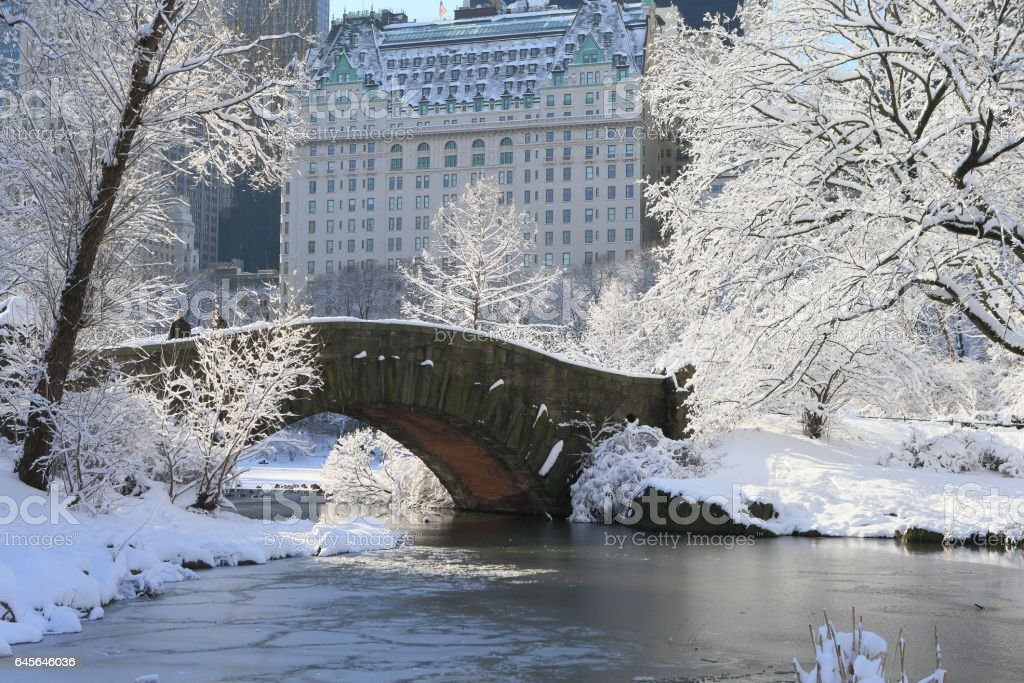 Bridge over frozen pond in Central Park, NYC stock photo