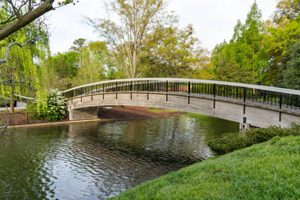 Bridge Over Lake in Pullen Park stock photo