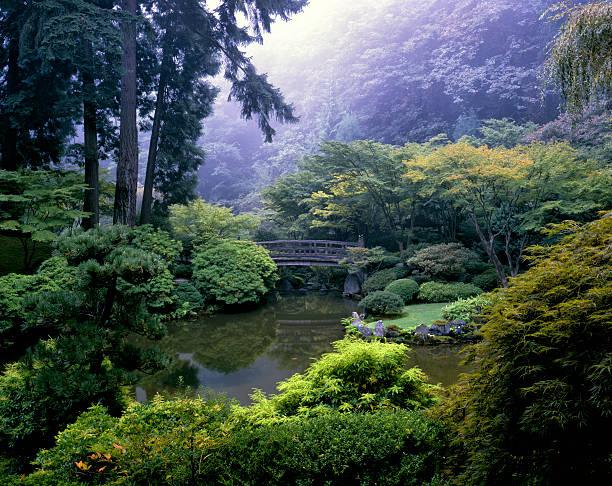 brücke über den teich im japanischen garten, portland, oregon - japanischer garten stock-fotos und bilder
