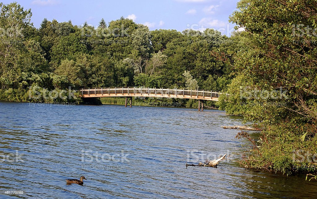 Bridge over river with duck in foreground stock photo
