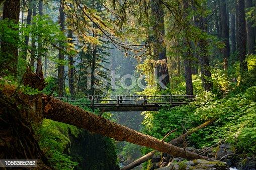 The bridge overlooking Sol Duc Falls