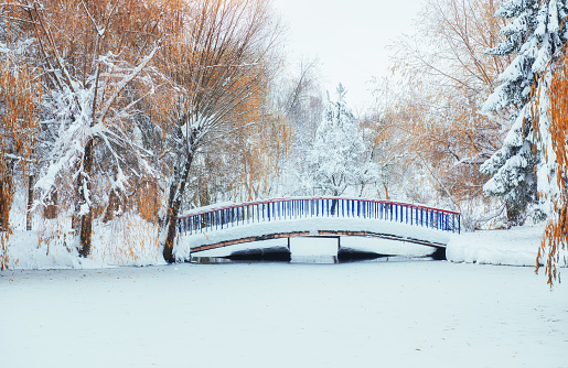 bridge over the river in winter.