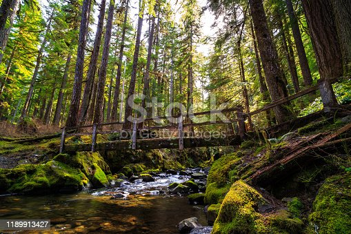 Bridge over the Stream, Sol Duc Wilderness at Olympic National Park Washington