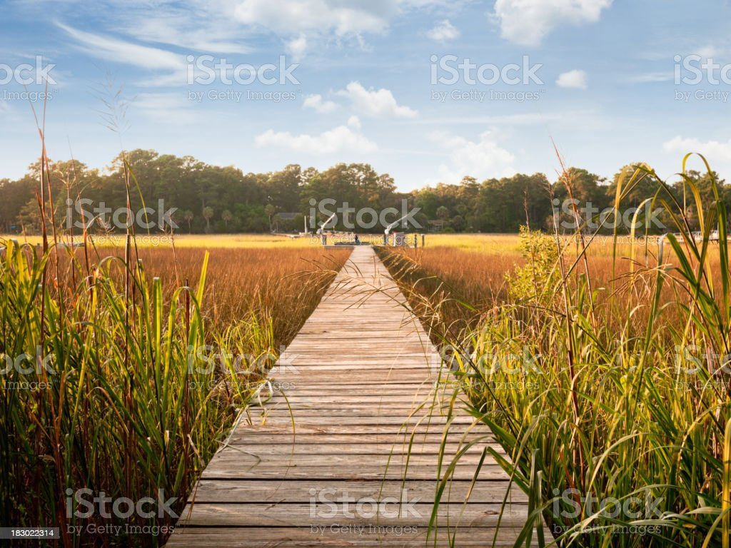 bridge over water royalty-free stock photo