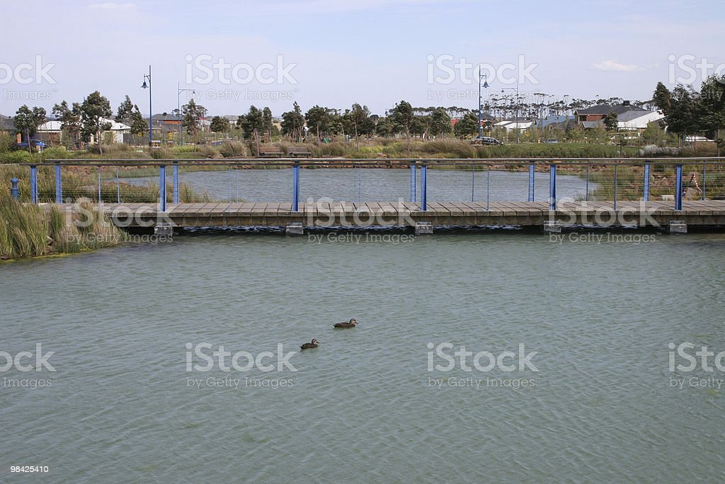 Bridge over water with ducks royalty-free stock photo