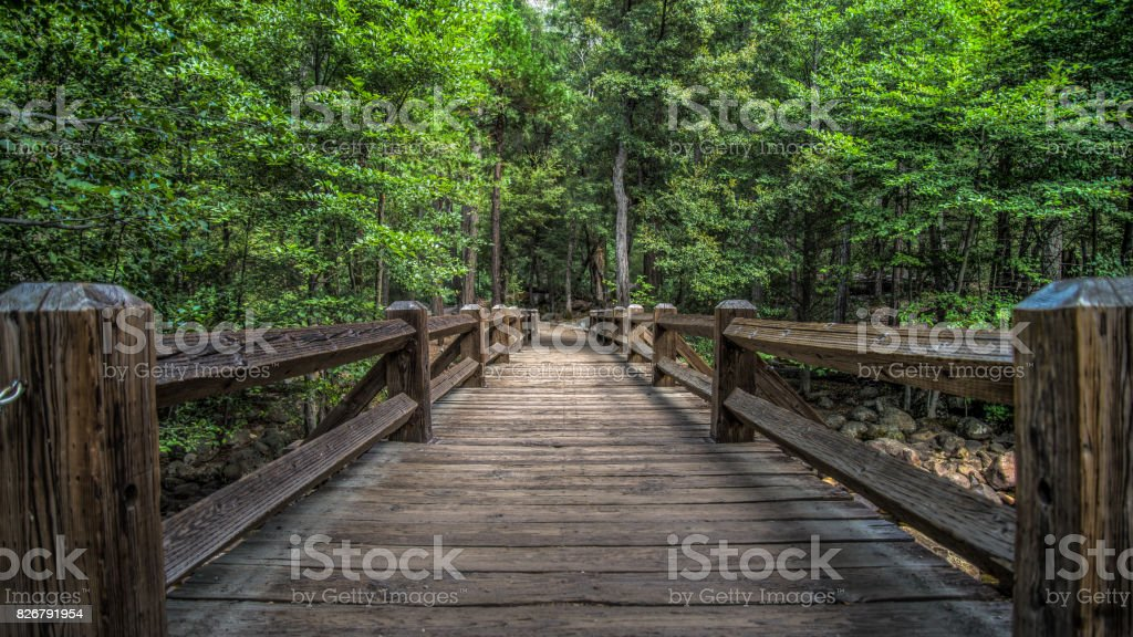 A bridge path lined by trees in Yosemite National Park stock photo